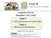 Lecture23 and 24_Cdks and M-Phase_Posted_Nov30th2015