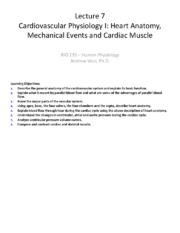 Lecture 7 - Cardiovascular Physiology I - Heart Anatomy Mechanical Events and Cardiac Muscle.pdf