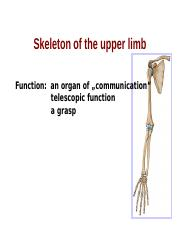 bones_of_the_upper_and_lower_limb_2017.ppt