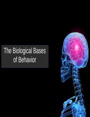Biological Bases(1).ppt