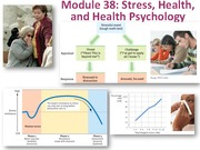 Psychology 10 Stress Health Psychology