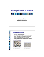 Lecture_7___milk_homogenization