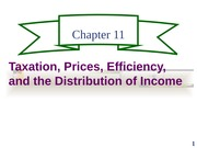 ch11 Taxation, Prices, Efficiency, and the Distribution of Income