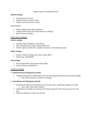 Chapter 6 Bones and Skeletal Tissue Student Outline.docx