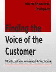 201406040706181 Finding the Voice of the Customer.pps