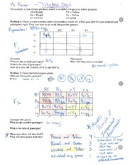 Printables Dihybrid Cross Worksheet Answers monohybrid cross worksheet answers abitlikethis punnett square worksheet