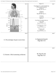 Print Chapter 22 The Respiratory System, chapter 22 exam, Human Anatomy & Physiology flashcards  Ea