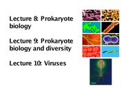 Lecture on Prokaryote Biology