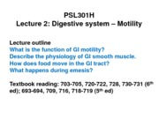 gi-lecture 2-2013