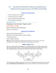 10. Additional Enzyme Assays and Differential Media