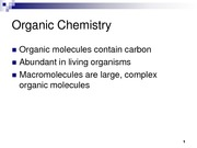 Carbon Biomolecules