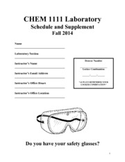 CHEM1111 Lab Supplement