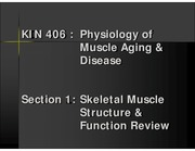 Section 1 - Skeletal Muscle Structure & Function Review 2013 (Color)