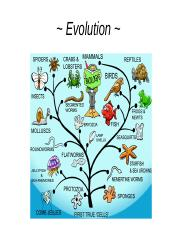 Evolution_fill in  (1).ppt
