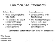 Chapter 03, Common Size Statements