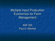 Production Economics 2
