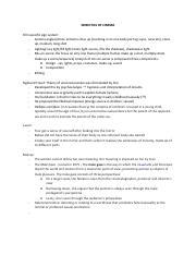 film language a semiotics of the cinema pdf