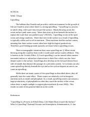 Charlotte temple essay