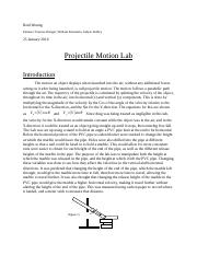 Lab 3 Projectile Motion.docx