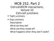 MCB 252 Cell Cell Junctions Lecture
