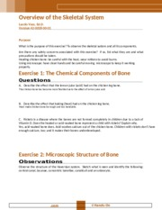 Overview of the Skeletal (1).docx