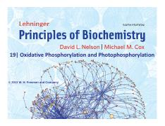 Lectures 13-14 - Photosynthesis and Membranes.pdf