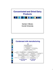 Lecture_22___condensed_milk_and_milk_powder