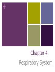 Chapter 4 - Respiratory System (1)