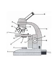 B-MICROSCOPE PARTS_ENLARGED IMAGE