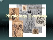 Physiology Overview