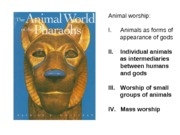 IV. Animal worship