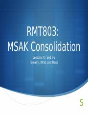 RMT803 MSAK Consolidation Lesson 5 and 6.pptx