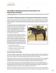 Stallion Anatomy and Physiology _ TheHorse - Stallion Anatomy and ...