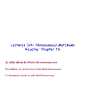 Lecture_3-4