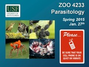 ZOO4233_Jan_27_Parasitic_Fungi_II_and_Flatworms_I