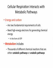 Lecture 17 - Introduction to Metabolism (II)