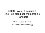 BE230_Lecture_3