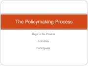 The Policymaking Process