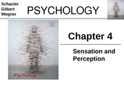 Chapter 4 - Sensation and Perception