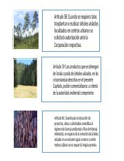 Aprovechamientos Forestales.pptx 2