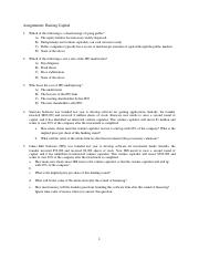 Assignments_RaisingCapital (1).pdf