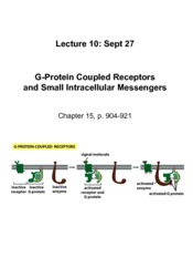 Lecture 10 Sept 27 GPCRs
