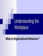 Chapter 1 What is Organizational Behaviour.ppt