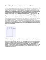 Molecular Biology Thunder dome of Enlightenment Answers – Madi Hecker.docx