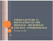 CSB349 Lecture 17_2012