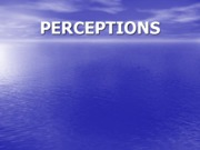Perception (Presentation)