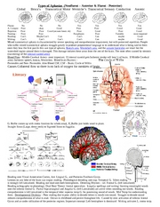 Neurobio of Comm. Cheat Sheet