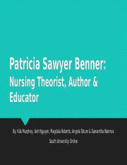 powerpoint presentation regarding patricia benner