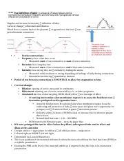 acute lymphoblastic leukemia case study hesi