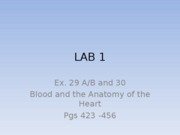 lab 1 heart blood